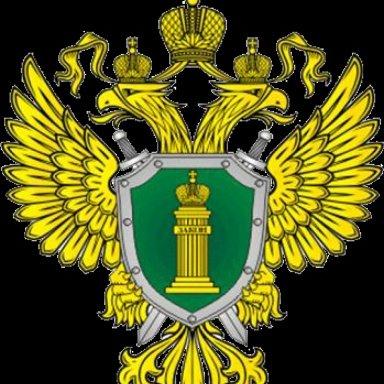 8arena.ru